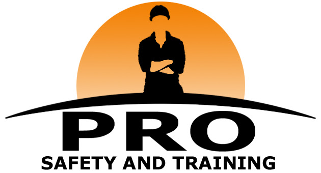 Pro Safety and Training